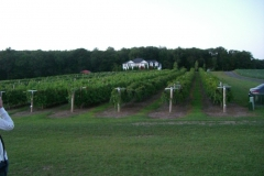 bus_tour__blue_ridge_winery